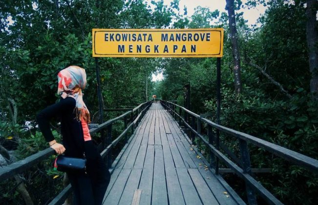 Ekowisata mangrove Mengkapan Lokasi : Mengkapan, Kec. Sungai Apit, Kabupaten Siak, Riau